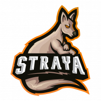 StrayaGaming Current & Retired Community Team